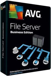 Obrázek AVG File Server Edition, licence pro nového uživatele, počet licencí 2, platnost 1 rok
